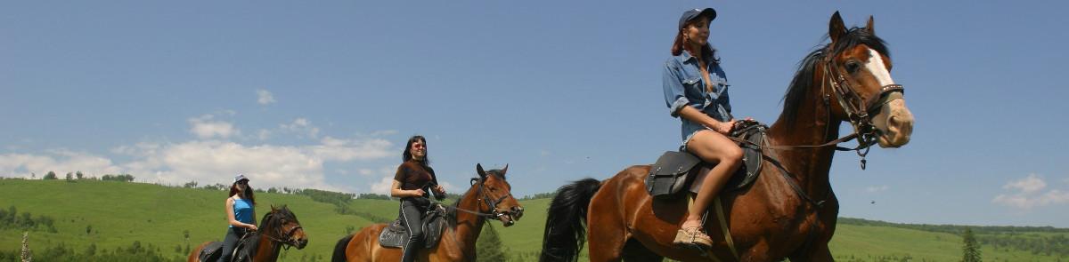 экскурсии в сочи 2018 цены и описание, Лошади Адлер, экскурсии на конях Адлер, прогулка в Адлере, Что делать в Сочи, чем заняться в Адлере, Конные прогулки в Сочи, конные прогулки в Адлере, прогулка на лошадях в Сочи, прогулка на лошадях в Адлере, экскурсия на лошадях в Сочи, экскурсия на лошадях в Адлере
