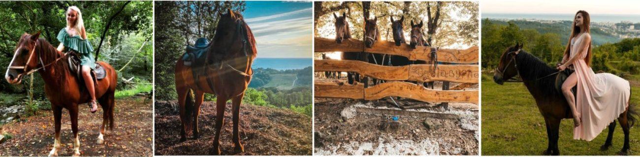 экскурсии в сочи 2021 цены и описание, Лошади Адлер, экскурсии на конях Адлер, прогулка в Адлере, Что делать в Сочи, чем заняться в Адлере, Конные прогулки в Сочи, конные прогулки в Адлере, прогулка на лошадях в Сочи, прогулка на лошадях в Адлере, экскурсия на лошадях в Сочи, экскурсия на лошадях в Адлере