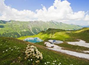 альпийские луга абхазии, экскурсия альпийские луга абхазии, джип тур альпийские луга абхазии, джипинг альпийские луга абхазии, перевал пыв, долина черных тюльпанов, гегский водопад, озеро рица, пикник в горах абхазии, озера абхазии, лучшая экскурсия абхазии, лучший маршрут абхазии, альпийские луга сочи, альпийские луга адлер