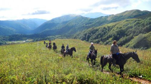 конные прогулки в Адлере и Сочи фото 5