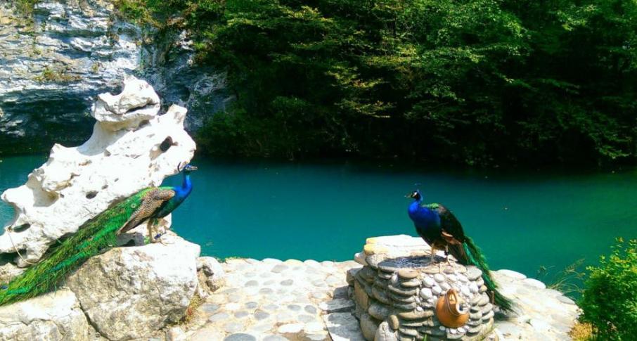 экскурсия в Абхазию на джипах фото 11