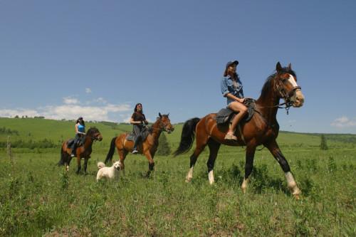 Экскурсии в Адлере, конные прогулки в Адлере и Сочи фото 3