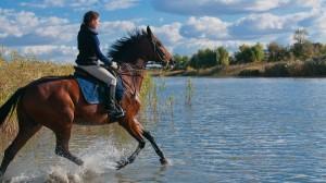 Экскурсии в Сочи, конные прогулки в Адлере и Сочи фото 2