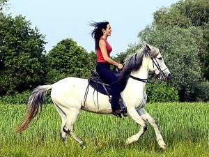 Экскурсии в Сочи, конные прогулки в Адлере, конные прогулки Сочи, прогулки на лошадях Сочи, прогулки на лошадях Адлер, верховая езда Адлер, верховая езда Сочи, экскурсии на лошадях Сочи, экскурсии на лошадях Адлер