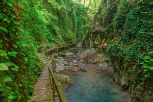 33 водопада, достопримечательности в Сочи, 33 водопада шоу, 33 водопада концерт, экскурсия водопады сочи, экскурсия водопады адлер, кавказское застолье сочи, кавказское застолье водопады, экскурсия на 33 водопада, экскурсия 33 водопада из Адлера, экскурсия 33 водопада из Сочи, экскурсия 33 водопада и Кавказское застолье